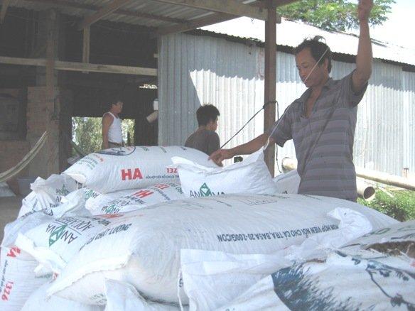 Sản lượng thức ăn chăn nuôi công nghiệp tăng 10%