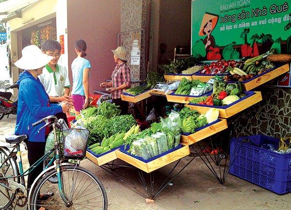 Kinh Tế Sài Gòn - Chuyện đời, chuyện rau