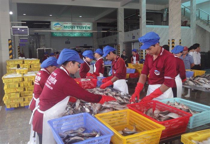 TPHCM, Bình Thuận hợp tác sản xuất, tiêu thụ nông thủy sản an toàn - ảnh 1